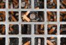 Omgeving Maasstad Ziekenhuis rookvrij