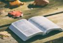 Rebible: Ontdekking van vergeten verhalen