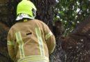 Brandweer redt poes met heimwee
