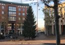 Kerstboom staat weer op Koningsplein