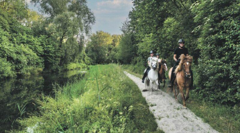 Ruiterspoor Oosterpark vernieuwd